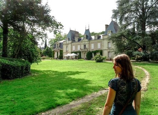 Wijnreis Loire