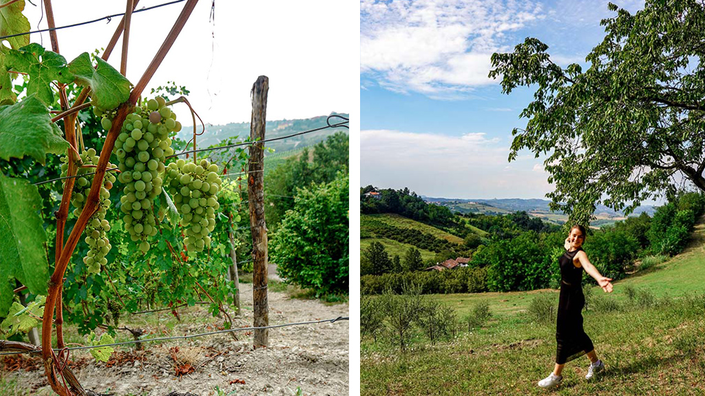 Wijnroadtrip Italië